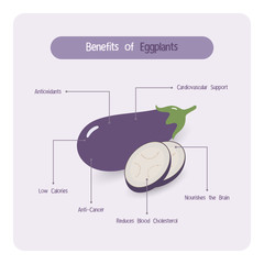 Infographic for eggplant benefits with handwriting font style