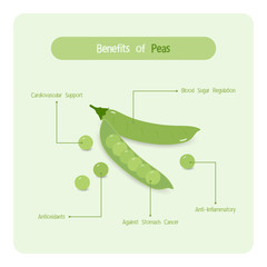 Infographic for peas benefits with handwriting font style
