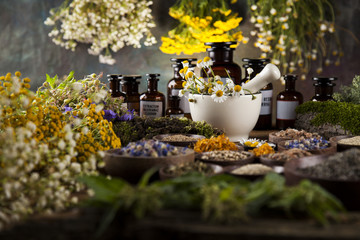Alternative medicine, dried herbs and mortar on wooden desk back