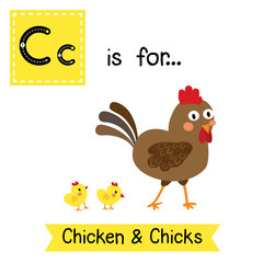 C letter tracing. Chicken & Chicks. Cute children zoo alphabet flash card. Funny cartoon animal. Kids abc education. Learning English vocabulary. Vector illustration.