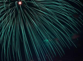 Firework for the celebration