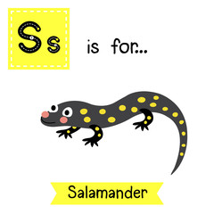 S letter tracing. Salamander. Cute children zoo alphabet flash card. Funny cartoon animal. Kids abc education. Learning English vocabulary. Vector illustration.