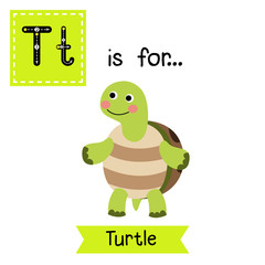 T letter tracing. Turtle standing on two legs. Cute children zoo alphabet flash card. Funny cartoon animal. Kids abc education. Learning English vocabulary. Vector illustration.