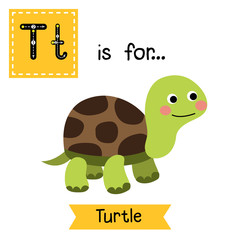 T letter tracing. Turtle. Cute children zoo alphabet flash card. Funny cartoon animal. Kids abc education. Learning English vocabulary. Vector illustration.