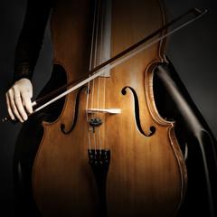 Cello player hands violoncello closeup