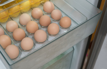 fresh eggs in a shelf of refrigerator
