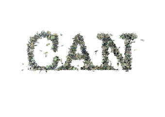 "The word ""CAN"" made out of 1, 5, 20, 50 and 100 dollar bills"