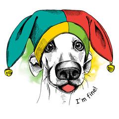 Dog in a april fools' hat. Vector illustration.