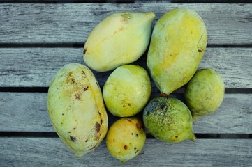 Fruit of the common pawpaw (asimina triloba), also called custard apple