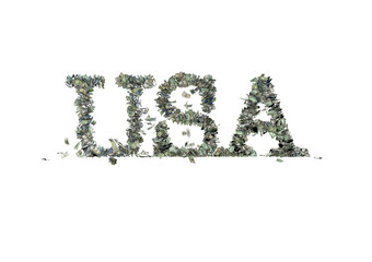 """The word """"USA"""" made out of 1, 5, 20, 50 and 100 dollar bills"""