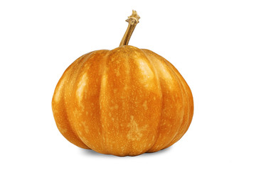 yellow color pumpkin on a white background