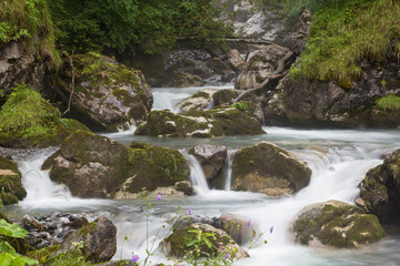cascade of small waterfalls on fast forest river