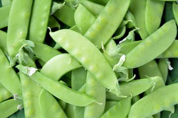 Organic Sugar pea pods