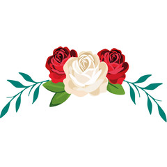 The ornament of white and red roses