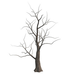 Dead Halloween tree isolated on white background. 3D illustration.