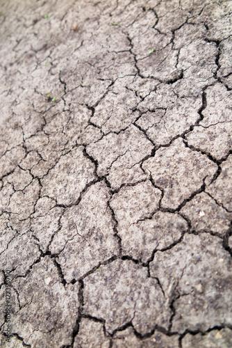 Cracked fertile soil in the early spring garden stock for Fertile soil 07