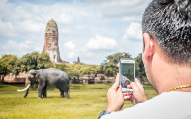 talented man photographing baby elephant with his mobile phone c