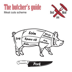 Butcher guide vector illustration. Cut scheme pork. Pig meat vintage