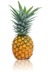 Pineapple on white background with reflection.