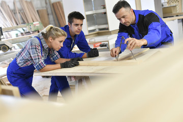 Students in woodwork training course with professional