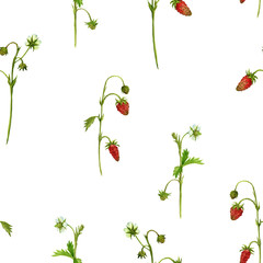 seamless pattern with watercolor drawing plants of strawberry