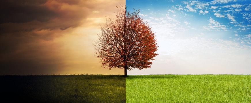 Sommer-Herbst