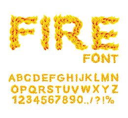 Fire font. Burning ABC. Flame Alphabet. Fiery letters.  Hot typo