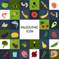 Paleolithic diet component. Set of colorful icons