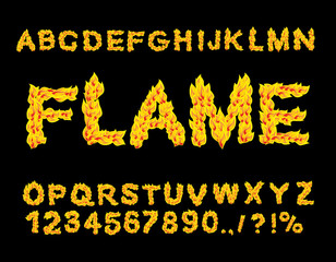 Flame Alphabet. Fire font. Fiery letters. Burning ABC. Hot typog