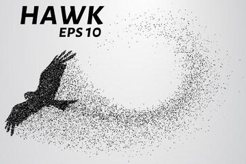 Hawk of the particles. The silhouette of a hawk consists of small circles. Vector illustration