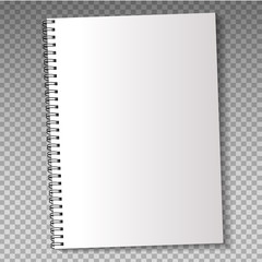 Realistic template notebook