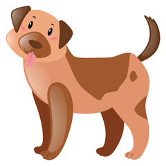 Brown dog with happy face