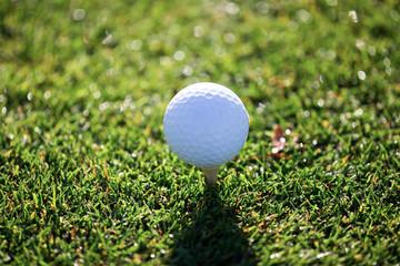 Golf ball on tee in the grass.