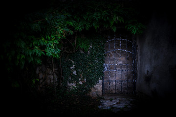 Old metal gate to the secret garden, covered with green ivy