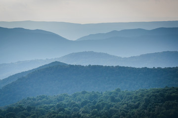 Layers of the Blue Ridge, seen from Skyline Drive, in Shenandoah