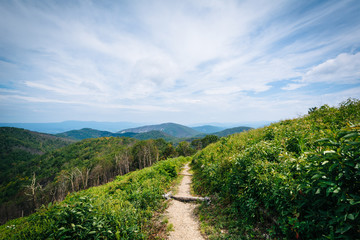 Trail and view of the Blue Ridge Mountains, in Shenandoah Nation