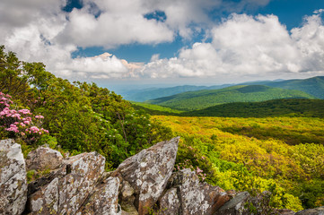 View of the Blue Ridge Mountains from Stony Man Mountain, in She