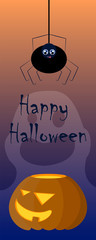 Halloween illustration with pumpkin and spider. Creepy and lovely cartoon characters image.
