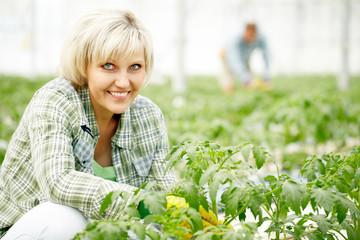Beautiful smiling farmer looking at camera in greenhouse