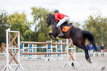 Horse rider man on show jumping competition