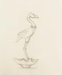 flamingo illustration. original hand drawing on paper.
