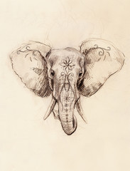 Elephant with floral ornament, pencil drawing on paper.