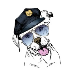 Vector close up portrait of police dog. English pitbull wearing the peak cap and sunglasses.