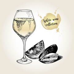 Vector set of white wine collection. Engraved vintage style. Glass, mussel and lime. Isolated on grunge background.