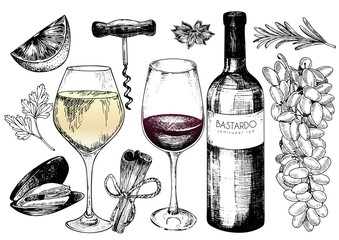 Vector hand drawn set of wine and apetizers. Grape, bottle, wineglass, rosemary, corckscrew, lime, mussel, spices.