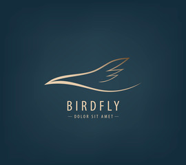 Vector line bird logo, Abstract
