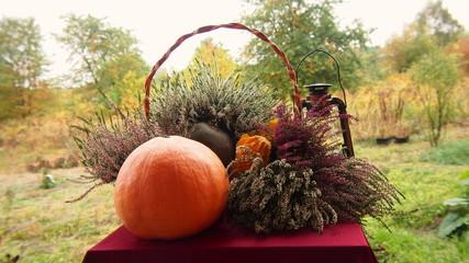 Kolory jesieni w ogrodzie przydomowym