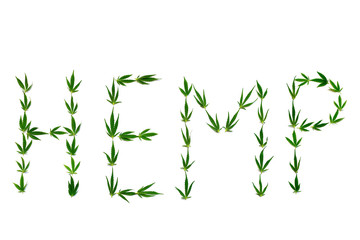 Word HEMP made of green leaves on white background