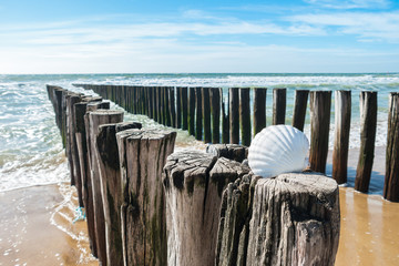 Wall Mural - Nordsee