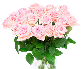 Pink blooming roses bouquet isolated on white background